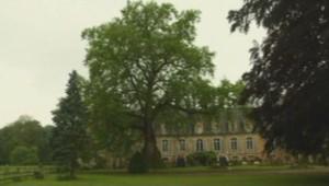 Ce platane aurait 500 ou 600 ans. Il est en lice pour le concours du plus bel arbre de France.
