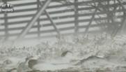 Après un pic de 25° en Laponie, la neige a blanchi les paysages