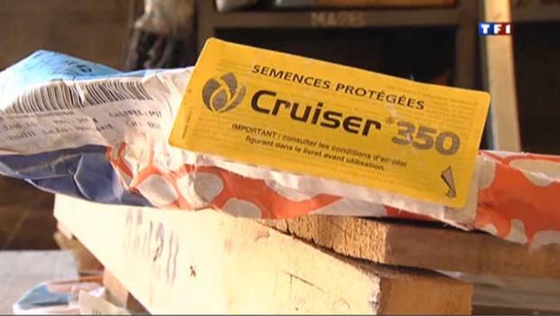 Pesticide : le Cruiser bientôt interdit en France