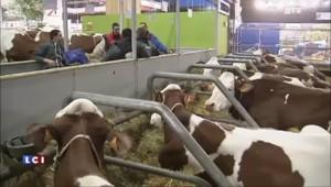 Salon de l'agriculture : Hollande s'engage sur la traçabilité et refuse les farines animales