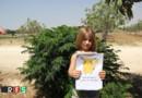 Des enfants syriens posent avec des pancartes de Pokémons tristes.