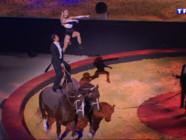 Le 20 heures du 30 mai 2015 : Les Equestriades, l'équtation à l'honneur ce week-end à Orange - 1891