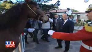 Hollande reçoit deux chevaux de Bouteflika