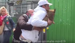 Un militant de l'association Cause animale Nord arrache son chiot à un SDF