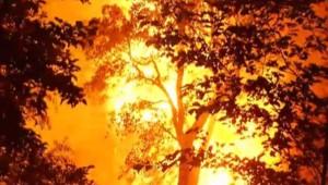 Incendie en Corse, 16/8/14