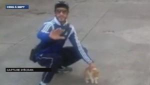 Interpellé à Marseille pour avoir lancé un chat en l'air