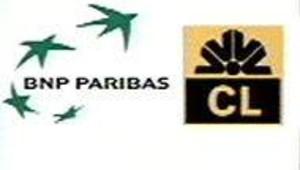 logos BNP Lyonnais nov 2002