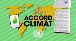 La minute pour comprendre : comment vont se dérouler les négociations pendant la COP 21 ?