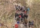 Pédophilie en Isère : les images de la marche silencieuse