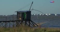 En Loire-Atlantique, les cabanes sur mer font rêver