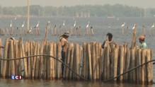COP21 : Miami, Thaïlande, le danger de l'augmentation du niveau des eaux