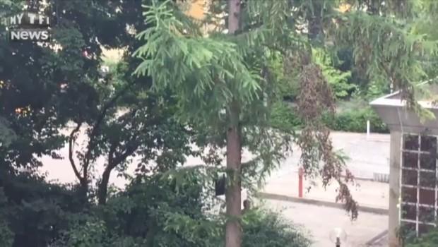 Fusillade à Munich : des passants filmés en train de prendre la fuite
