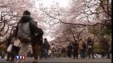 A Tokyo, la vie reprend doucement