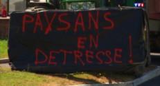 Le 13 heures du 4 juillet 2015 : Lannion : des agriculteurs bloquent les grandes surfaces contre les prix en grande distribution - 704