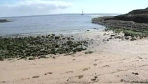 plage_souillee_charente