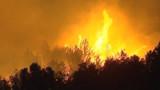 Les feux stoppés dans le Var et les Alpes-Maritimes