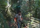 Google Street View cartographie l'Amazonie.