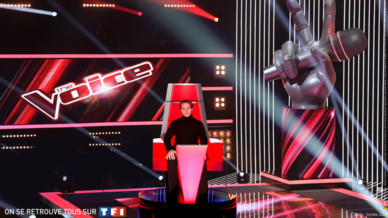 TheVoice-Exemple6-HD