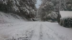 neige Palisse