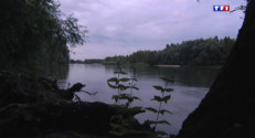 Le 13 heures du 20 août 2014 : Des matin� trop fra�es en Indre-et-Loire - 1385.318