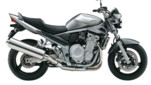 BANDIT 1250
