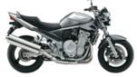 BANDIT 1250