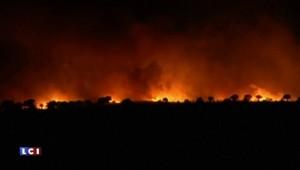 Espagne : un incendie ravage plus de 6500 hectares de forêt