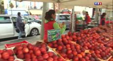 Le 13 heures du 20 août 2014 : Fruits et l�mes au march�e Trouville : les prix n'ont pas augment� 1493.8023790893553