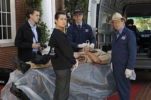 NCIS : Enquêtes spéciales - Saison 9. Série créée par Donald P. Bellisario, Don McGill en 2003. Avec Mark Harmon, Michael Weatherly, Pauley Perrette et David McCallum