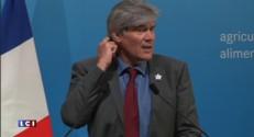 """Crise porcine : Stéphane Le Foll plaide pour une """"démarche de filière"""""""