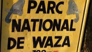 Parc Waza au Cameroun