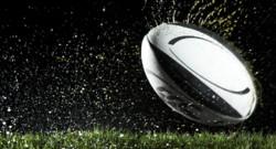 rugby ballon pelouse prétexte