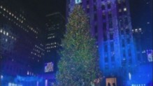 Sapin du Rockfeller center