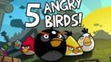 Angry Birds arrive sur PS, PSP et DS FINI