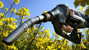 La taxe carbone débarque le 1er juillet 2010