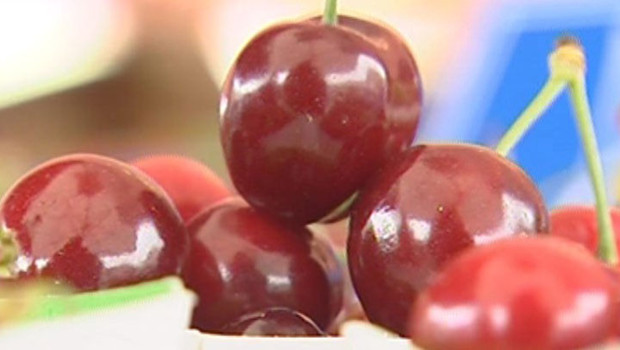 cerises fruits été