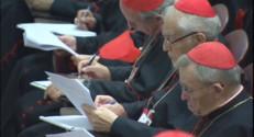 Le 20 heures du 19 octobre 2014 : Un synode aux d�ts tendus - 1312.0242333984374