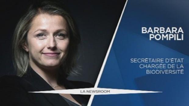 Barbara Pompili (EELV) nommée secrétaire d'Etat chargée de la Biodiversité