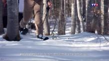 Le ski-raquette, peu d'effort pour vivre la montagne