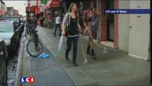 Des chiens invisibles envahissent la ville