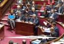 Notre-Dame-des-Landes et Fessenheim : les dossiers chauds des écologistes entrés au gouvernement