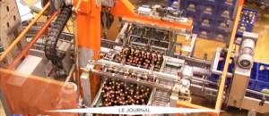 La bière allemande fête ses 500 ans !