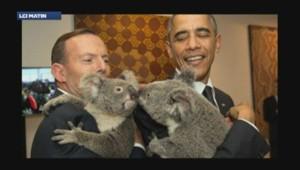 Tony Abbott, premier ministre australien, et Barack Obama, posant avec des koalas en marge du G20