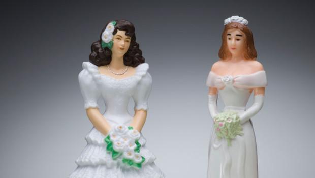 mariage gay homosexuels