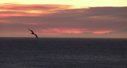 mer soleil coucher océan Théoule-sur-Mer