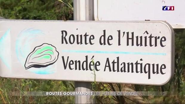 Entre mer et marées salants vendéens, au cœur de la route de l'huitre