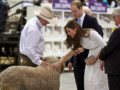 Kate Middleton et le Prince William au Royal Easter Show de Sydney le 18 avril 2014