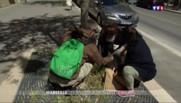 Action citoyenne : nettoyage de printemps dans les rues de Marseille