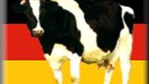 Vache folle: nouveaux ministres à Berlin