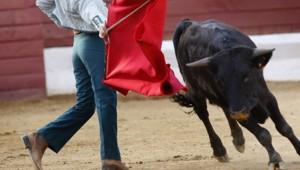 tauromachie torero arêne torero corrida